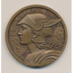 Médaille - Établissemnt Pernod - F.Fraisse - bronze
