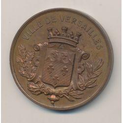 Médaille - Exposition rétrospective - 1881 - Versailles - Bronze