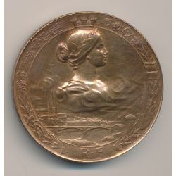 Médaille - Exposition Nationale Angers - 1895 - Bronze