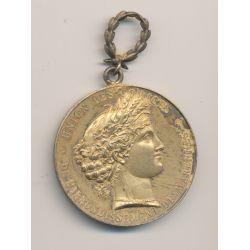 Médaille - Union des comices - Arrondissement de Marennes - Concours de St gagnant 1895 - bronze