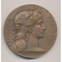 Médaille - République française - Sénateur Dumesnil - bronze