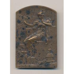 Plaquette - Comité français des expositions à l'étranger - bronze - L.Bottée