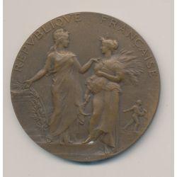 Médaille - Concours général de Paris - 1905 Jury - bronze - A.Dubois