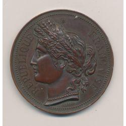 Médaille - Comice agricole de Frontenay - 1892 - bronze - A.Desaide