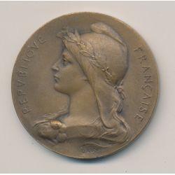 Médaille - Association agricole de vierzon - bronze - O.Roty - 41mm