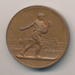 Médaille - Comice agricole de Lamotte Beuvron - 1888 - Loir et cher - J.Lagrange - bronze