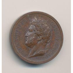 Médaille - Louis Philippe I - L'armée au duc d'Orléans - 1842 - bronze