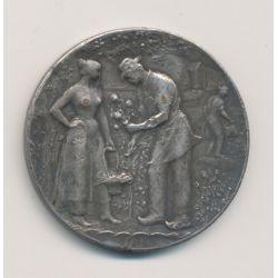 Médaille - Messager Niortais - 3e prix - chateau de la vallière - bronze argenté