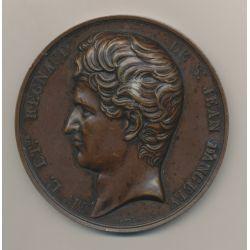 Médaille - Regnaud de St Jean d'Angély - Bronze - F.Caqué