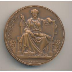 Médaille - Tribunal de commerce - La Rochelle - bronze - A.Borrel