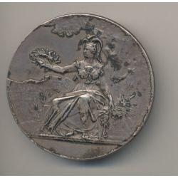 Médaille - Journal La France - à la minerve assise - Bordeaux - bronze argenté