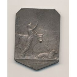 Médaille - Journal l'acclimatation - bronze argenté