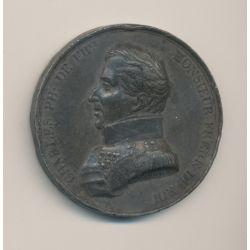 Médaille - Charles philippe de France - étain