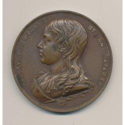 Médaille - Louis XVIII Roi de france et Navarre - né 1785 roi 1793 - mort au temple 1795 - cuivre