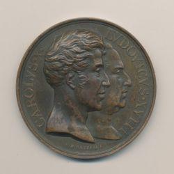 Médaille - Statue équestre Louis XIII - Buste Louis XVIII et Charles X - 1829 - cuivre - E.Gatteaux - 50mm