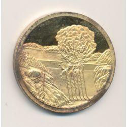 Médaille - Collection Résistance française - 1939/1945 - N°5