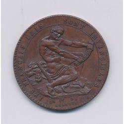 Monneron - 1 Sol à l'Hercule - 1792 - AN IV - cuivre - SUP+