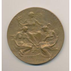 Médaille - Exposition Universelle Liège - 1905 - Bronze - 70mm - TTB