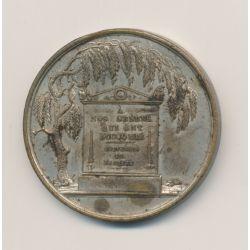 Médaille - Les 3 Glorieuses - 1830 - bronze argenté - 38mm - TTB