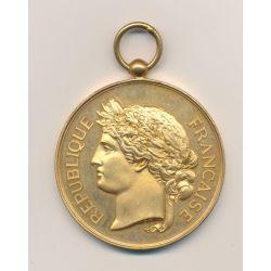 Médaille - Société Nationale du tir des communes de France - médaille d'honneur - bronze doré - 51mm - SUP+
