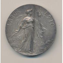 Médaille - Labor 1910 - 1870-71 - Progrès gloire - bronze argenté - Georges Lemaire - 50mm - TTB+