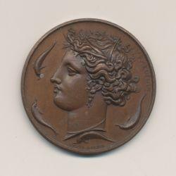 Médaille - Société des Sciences,des lettres et des arts - Seine et Oise - 1834 - par Alphée Dubois - cuivre - 37mm - SUP
