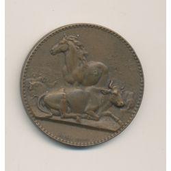 Médaille - Cheval et boeuf - A.Dubois - bronze - 32mm - TTB