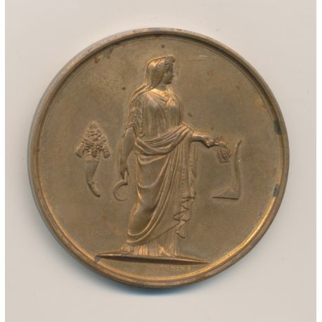 Médaille - Comité central de Sologne - Concours de béliers - 1898 - bronze - 51mm - TTB+