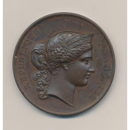 Médaille - Concours général d'animaux en boucherie - Paris 1877 - cuivre - 51mm - TTB+
