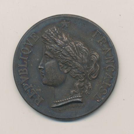 Médaille - Exposition horticole et florale - Angoulême 1885 - argent - 37mm - TTB