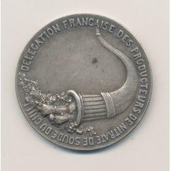 Médaille - Délégation Française des producteurs de nitrate de soude au Chili - bronze argenté - 37mm - TTB