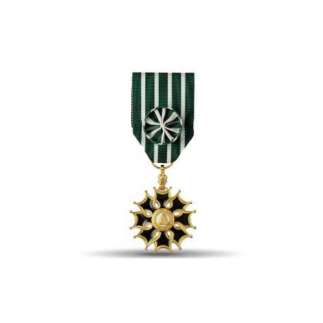 Ordre des arts et des lettres - Officier - Taille ordonnance