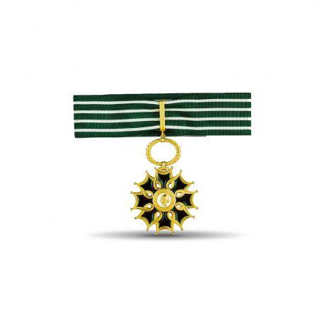 Ordre des arts et des lettres - Commandeur - Taille ordonnance