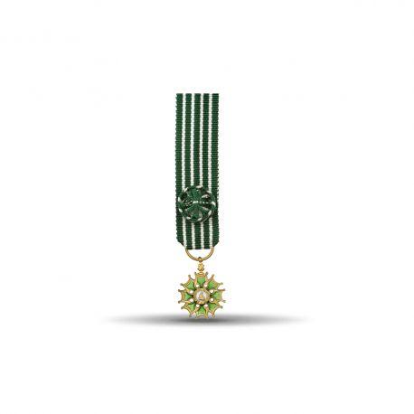 Ordre des arts et des lettres - Officier - Taille réduction