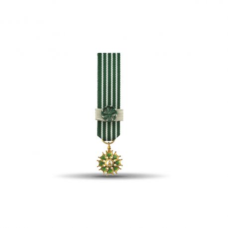 Ordre des arts et des lettres - Commandeur - Taille réduction