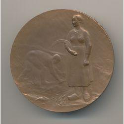 Médaille - Thème agricole - offert par le député - bronze - 50mm - TTB+