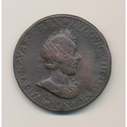 Médaille - Louis XIII - Nicolas de bailleul - 3e mandat 1628 - bronze - 38mm - B/TB