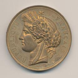 Médaille - Exposition universelle - Paris Trocadéro 1878 - bronze doré - 51mm - boudiné - SUP